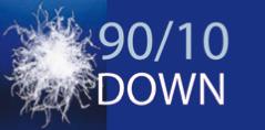 90/10 DOWN